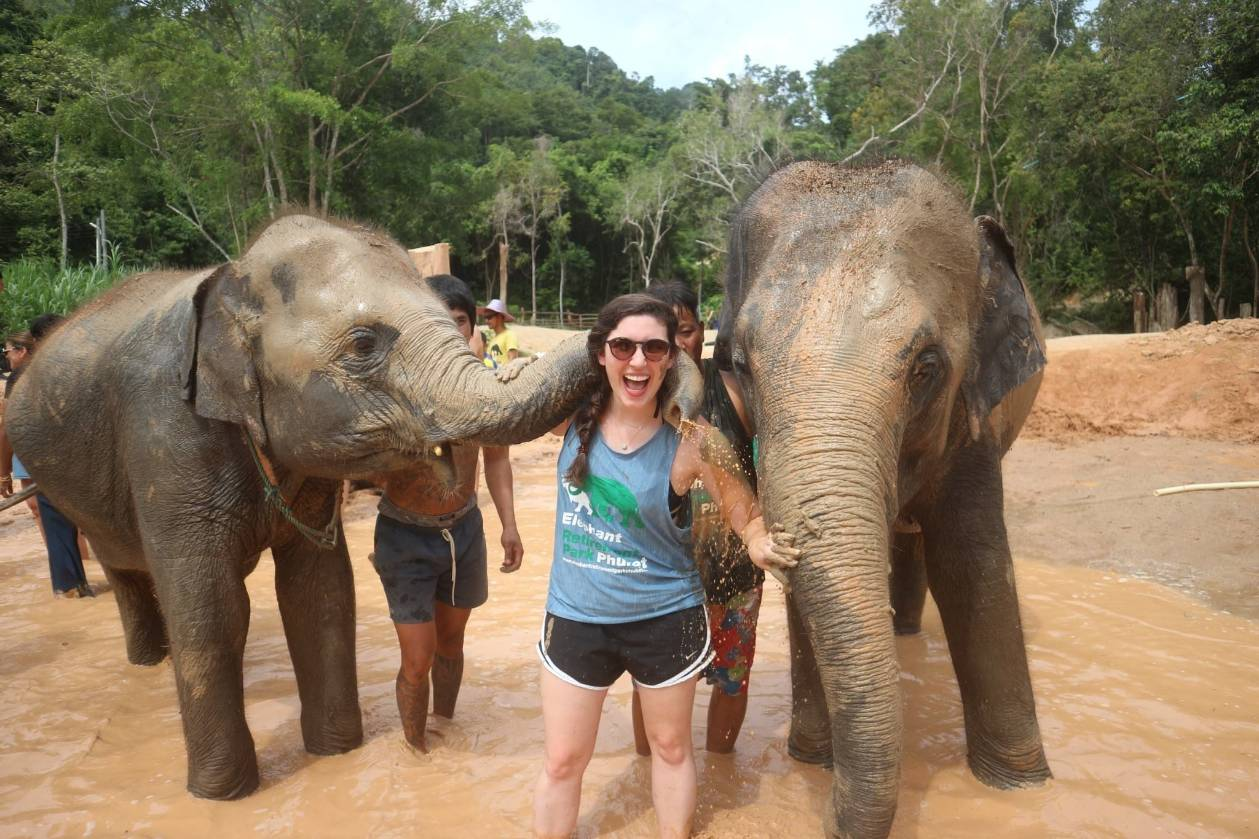 Volunteer Elephant Care Training Program Tour