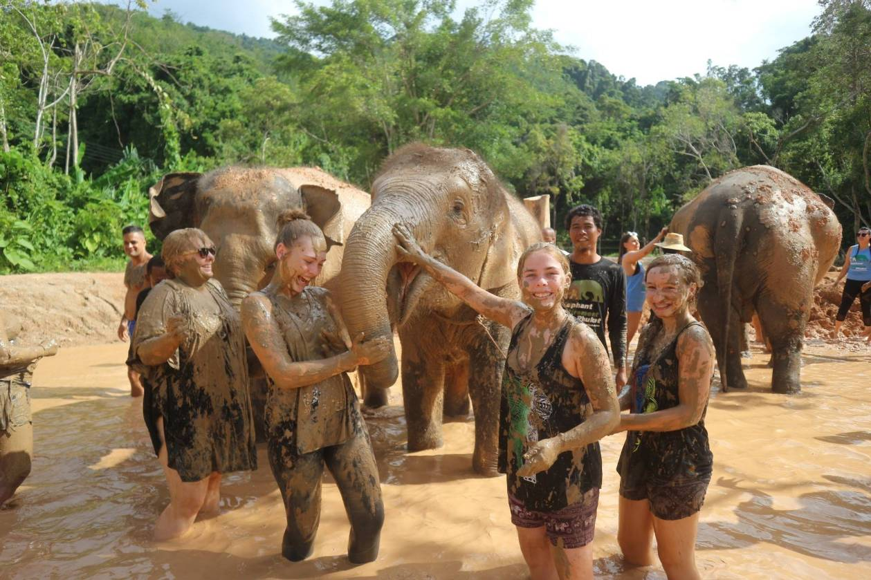 Half Day Volunteer Elephant Care Training Program 2D/1N