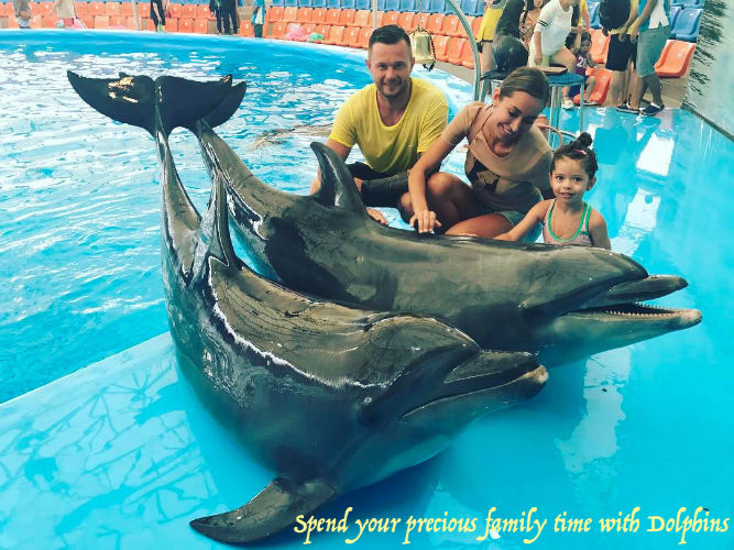 Dolphin Bay Phuket Tour with Transfer